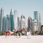 Dubai food trends food and co